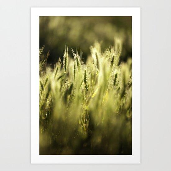 Summer Grass Portrait Art Print