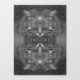 Ginger, in reflection and B&W Canvas Print