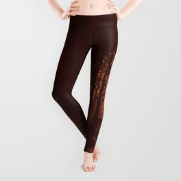Autumn forest with owl Leggings