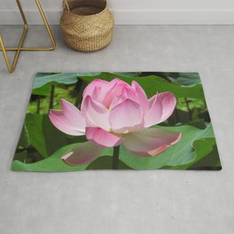 Pink Lotus Bloom Rug