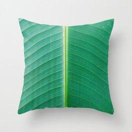 Banana leaf texture close up Throw Pillow