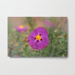 Lynda Anne Art Flower Metal Print