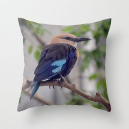 National Aviary - Pittsburgh - Blue Bellied Roller Throw Pillow