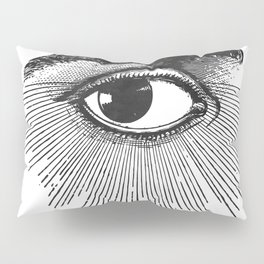 I See You. Black and White Pillow Sham