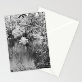 Pine Woods Of East Texas Exhibit Stationery Cards