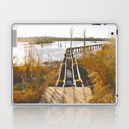 Hurricane Ike & Lesser Damage Laptop & iPad Skin