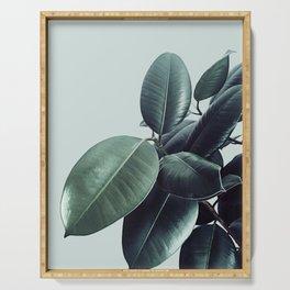 Ficus Elastica #20 #LightGreen #foliage #decor #art #society6 Serving Tray