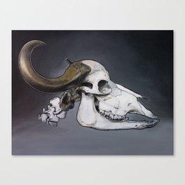 Bull Skull Canvas Print