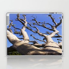 Allure Laptop & iPad Skin