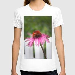 Coneflower Dancing T-shirt