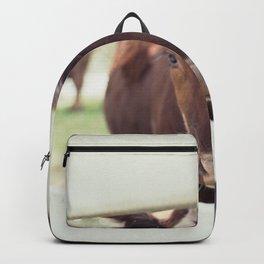 Gertie Backpack