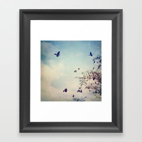 Birds of Clearwater Framed Art Print