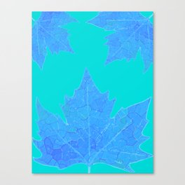 Sycamore Stained Glass Tiffany style design Ice leaf on turquoise Canvas Print