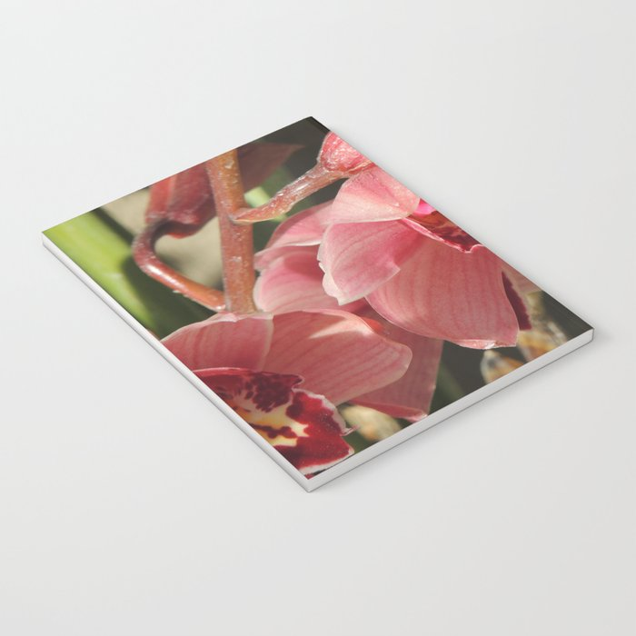 One Orchid on a Line Notebook