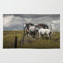 Western Horses by the Pasture Fence under a Cloudy Sky in Montana Rug