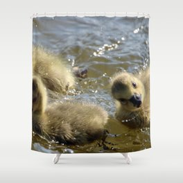 Silly Goslings Shower Curtain