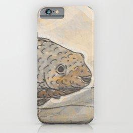 Fishes  /  Mirror underwater iPhone Case