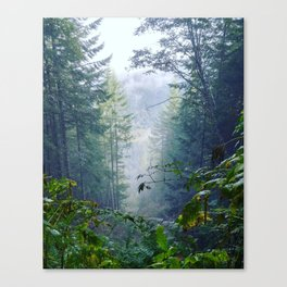Foggy Freedom Canvas Print