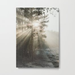 Sun Rays in the forest | Misty sunny morning | Trees and light | Travel nature photography Metal Print