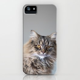 Royal Tom cat : Look into my eyes iPhone Case