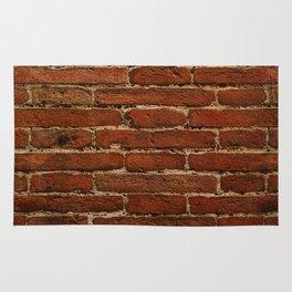 On A Brick Wall Rug