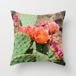 Cacti in Bloom 6 Throw Pillow