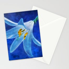 White Lilly Stationery Cards