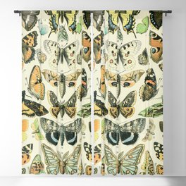 Vintage Butterfly Diagram // Papillions by Adolphe Millot XL 19th Century Science Textbook Artwork Blackout Curtain