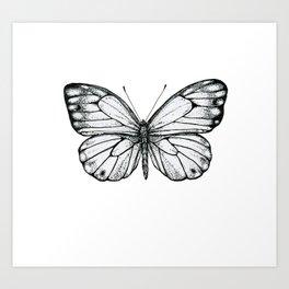 Pretty Butterfly Art Print