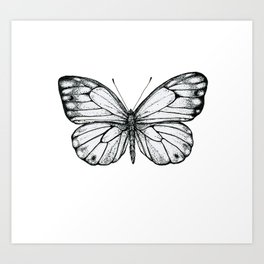 Pretty Butterfly Art Print