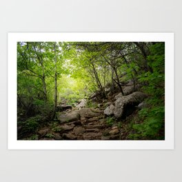 Your Own Path Art Print