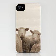 Smiling Sheep  Slim Case iPhone (4, 4s)