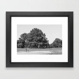 Prospect Park Framed Art Print