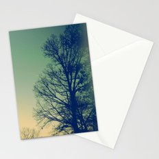 Surround Stationery Cards