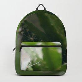 Pitahaya Backpack