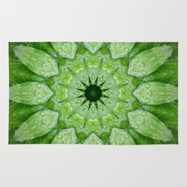 Green Mandala, heart chakra, nature sacred geometry rain drops leaves Rug
