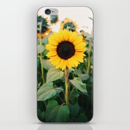 Sunny iPhone Skin