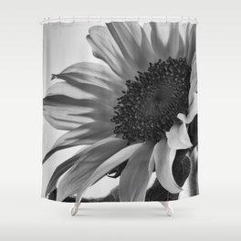 Sunflower Black & White Shower Curtain