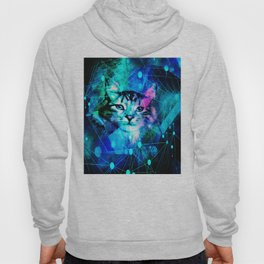 Kitty Cat Laser Lights at the Aleurorave Hoody