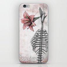 Amaryllis Brasiliensis iPhone & iPod Skin