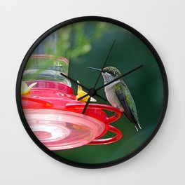 Perched Hummingbird Wall Clock