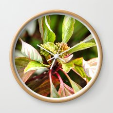 Birth Wall Clock
