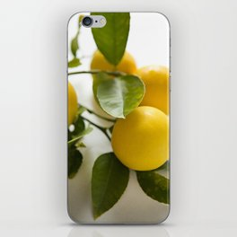 Branch of Lemons iPhone Skin