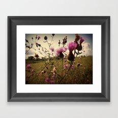 Myriad of Magenta Framed Art Print