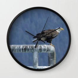 Bald Eagle of Resurrection Bay, No. 3 Wall Clock