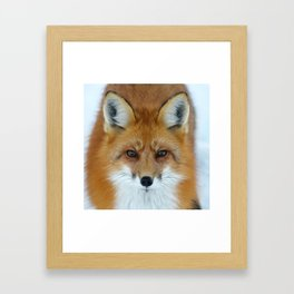 I can see into your soul Framed Art Print