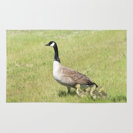 Canada Geese, Mother and Babies Rug