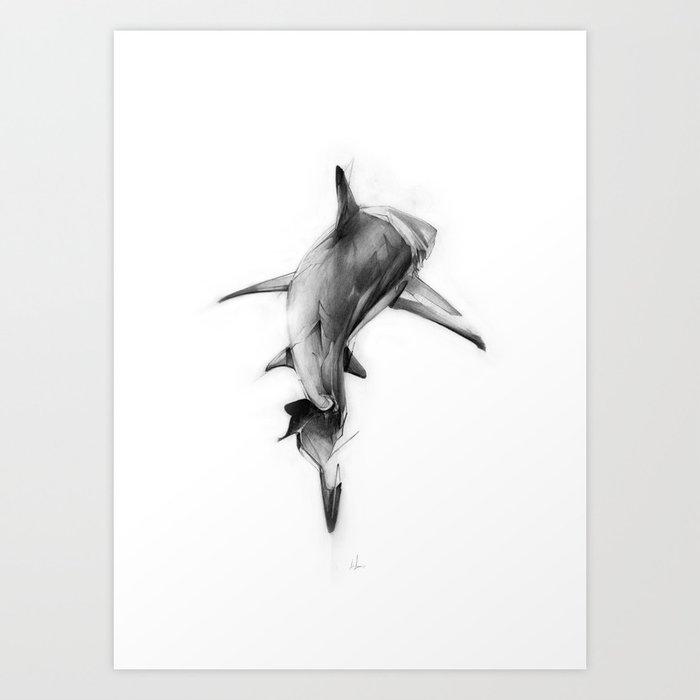 Shark II Kunstdrucke
