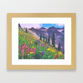 Multicolor Slope on Blue Lakes Pass, Colorado Framed Art Print