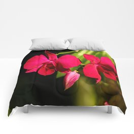 Red For Love Comforters